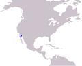 Cetacea range map Vaquita.PNG