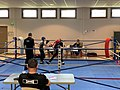 Championnat départemental de l'Ain de savate jeunes 2020 (5).jpg