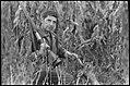 Chasse en Yougoslavie du 18 au 23 oct. 68 (1968) - 53Fi6786.jpg