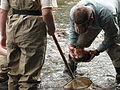 Checking rocks for animals (6207753650).jpg
