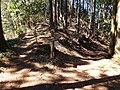Chichibu pilgrimage routes 3334 Fudatate Pass.jpg