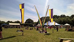 Chilled in a Field Festival - Sunday afternoon at the festival in 2015