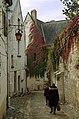 Chinon (Indre-et-Loire) (24334837160).jpg