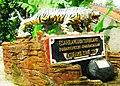 Cintakarya, Sindangkerta, West Bandung Regency, West Java, Indonesia - panoramio.jpg