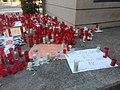 Ciris a les protestes contra Peter Lim.jpg