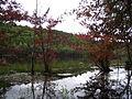 Clarke Reservation lake.jpg