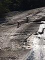 Climbing a Waterfall.jpg