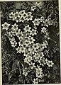 Climbing plants (1915) (20647678372).jpg