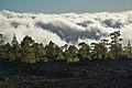Clouds Teide Tenerife B.jpg