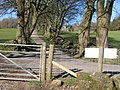 Clwydian Way joining the lane to Bodidris Hall Hotel - geograph.org.uk - 348729.jpg