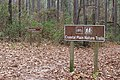 Coastal Plain Nature Trails, Red Roberts Landing.jpg