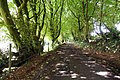 Coch-Y-North Road, Pontypool.jpg