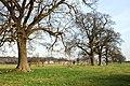 Coleshill Park - geograph.org.uk - 1210108.jpg