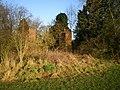 Cottage ruins - geograph.org.uk - 1617592.jpg