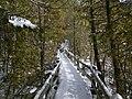 Crawford Lake Trail, Ontario, Canada3.JPG