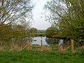 Crookhouse pond - geograph.org.uk - 1256930.jpg