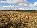Culliagh Townland - geograph.org.uk - 1771375.jpg