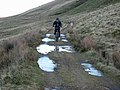 Cyclist on the Old Coach Road - geograph.org.uk - 631049.jpg