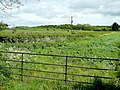 Dairy land adjacent to Lower Weston Farm - geograph.org.uk - 1307544.jpg
