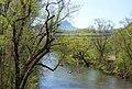 Dan River - panoramio.jpg