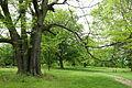 Dawes Arboretum - DSC02848.JPG