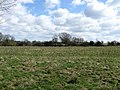Denshire Field - geograph.org.uk - 1800391.jpg