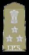 Plaatsvervangend inspecteur-generaal van Police.png