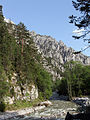 Der Johnsbach im Nationalpark Gesäuse.jpg