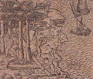 Fernão de Loronha - Brazilwood harvesting, 16th century