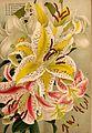 Descriptive catalogue of flowering, ornamental trees, shrubs, bulbs, herbs, climbers, fruit trees, &c., &c., &c (15136395009).jpg