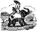 Deux-personnes-sur-elephant.jpg