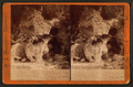 Devil's kitchen, from Robert N. Dennis collection of stereoscopic views.png