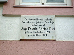Adrian Diel - Commemorative plaque for Adrian Diel on the Eberhard House – Pfaffengasse 27 in Diez
