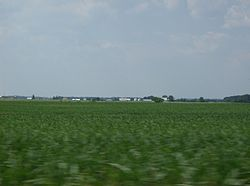 Farmland in Dinsmore Township