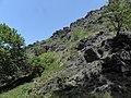 Divoká Šárka - panoramio (28).jpg