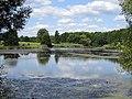 Dmytrivka (Fastiv) pond2.JPG