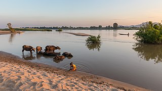 Don Puay river bank landscape at sunset.jpg