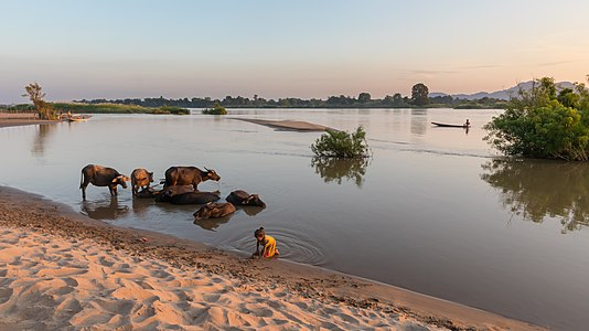 River bank at sunset from the island of Don Puay, Laos