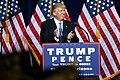 Donald Trump (29302160821).jpg