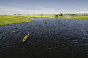 Majuli - Doriya River of Majuli.