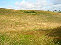 Downland near Upper Hyde - geograph.org.uk - 508206.jpg