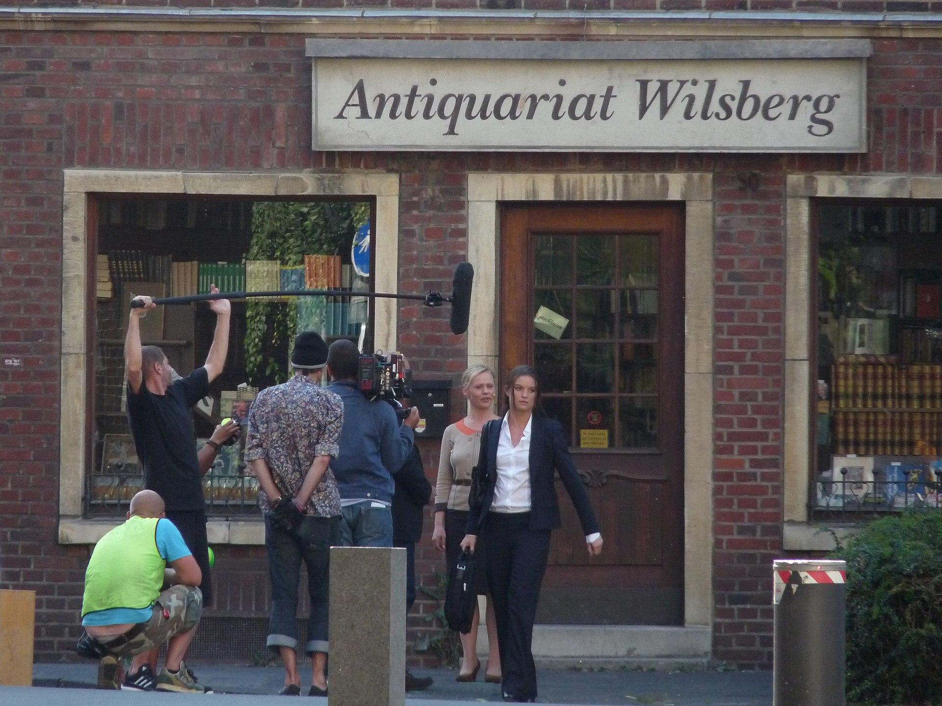 Wikipedia Wilsberg