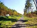 Droga rowerowa z Torunia do Unisławia.jpg