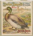 Duck brand molasses. Bryan Bro's New Orleans LCCN2003667054.tif