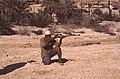 Dunst Oman scan0314 - Scharfschütze.jpg