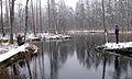 Eesti ja Armeenia vikipedist tutvuvad Vilbaste allikaga Endla looduskaitsealal.jpg