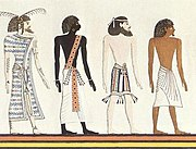 Egyptian races
