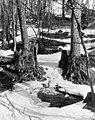 Eläintarha, Alppila (Alppipuisto) - N252234 (hkm.HKMS000005-00000upg).jpg