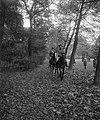 Enkele ruiters maken een rit door het park, Bestanddeelnr 919-7418.jpg