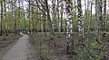 Entrance in the park. April 2014. - Вход в парк. Апрель 2014. - panoramio.jpg